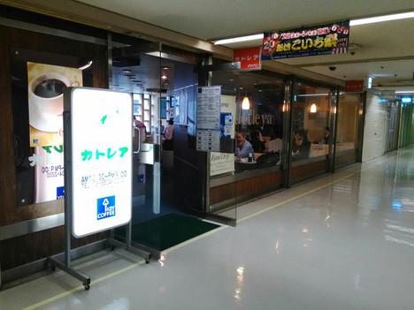 Shinbashi_cattleya15071